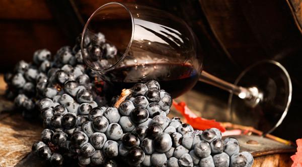 На винных заводах Крыма пройдут дни открытых дверей в рамках #Ноябрьфест