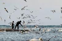 Крымские рекордсмены: какие курорты стали фаворитами у туристов в 2018 году