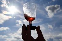 В Коктебеле откроется бесплатный Музей вина