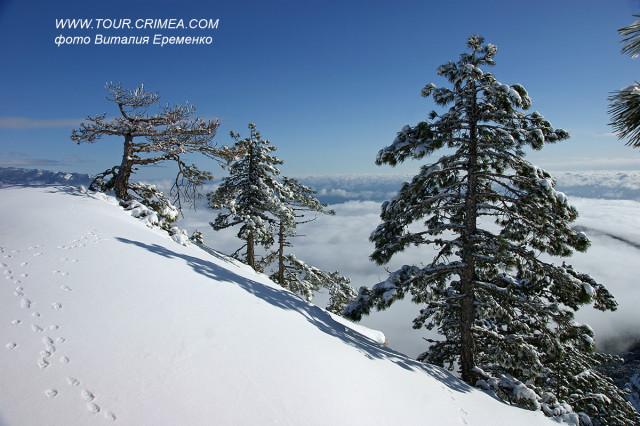 В горах Крыма выпал снег!