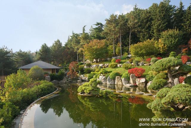 Японский сад в санатории Айвазовское. Осень 2019
