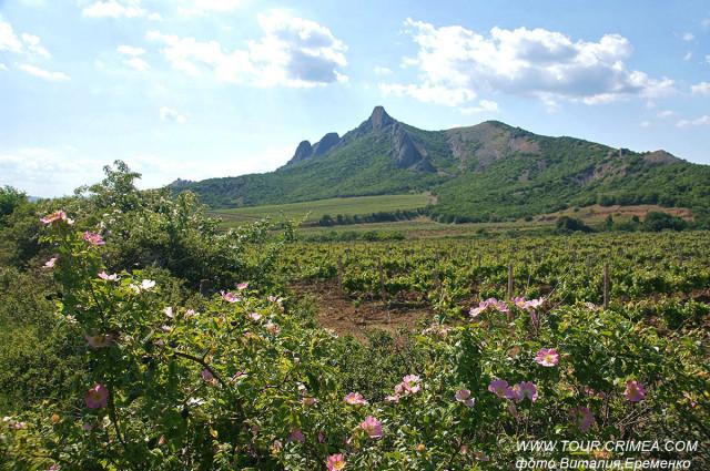 Судакская долина в юго-восточном Крыму