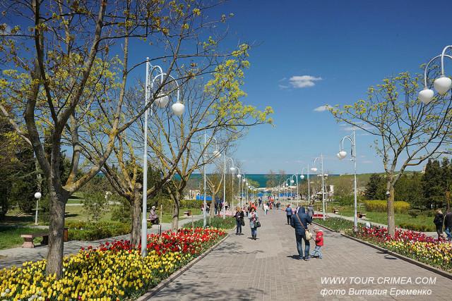 Севастопольский парад тюльпанов 2019 в сквере Ахматовой