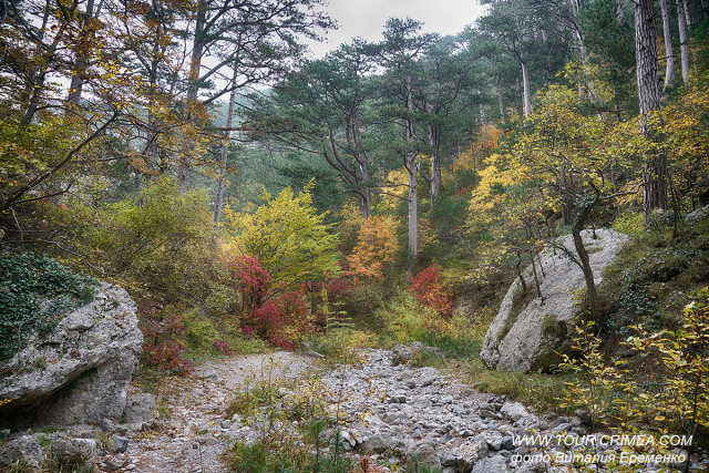 Волшебная крымская осень в ущелье Уч-Кош.