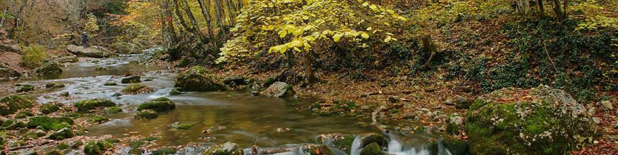 Золотая осень в Большой каньоне Крыма.