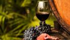 Градсовет Крыма одобрил строительство винного парка в Ялте