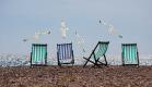Девять ялтинских проектов по развитию пляжей и туристической отрасли получили гранты Ростуризма
