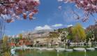 """Чарующая красота Востока и крымской природы на фестивале """"Цветущая сакура"""" 2021 г. в Японском саду курортного комплекса  Mriya Resort & SPA"""